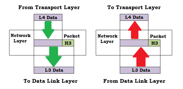 4 Network layer in OSI model