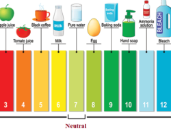 pH Measurement – Working Principle, Applications and Advantages