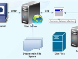 Common Gateway Interface (CGI) – How it Works, Features & Applications